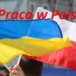 Условия для работы украинцев в Польше могут существенно измениться