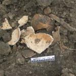 В селе Лавров Луцкого района нашли захоронение XVI-XVII века