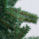 Лесничества будут продавать елки от 35 гривен