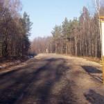 Грибникам и ягодникам Любешівщини будет легче заготавливать лесную продукцию