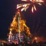 В Боратини зажгли новогоднюю елку