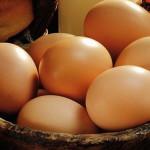 На предновогоднем ярмарке в Луцке яйца были по 8,5, а свинина – по 34 гривны за кило